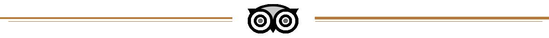TripAdvisor Logo Header